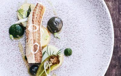 Bijela riba – gastronomski dragulj Mediterana