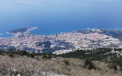 Makarska – Gastronomy and Accommodation